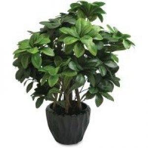 Artificial-Plants-Custom.jpg